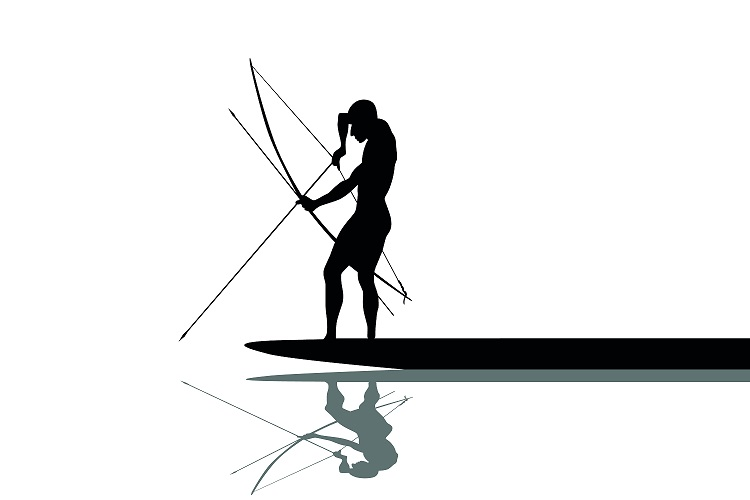 recurve bowfishing bow