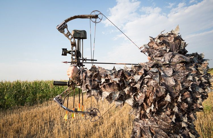compound bow hunting